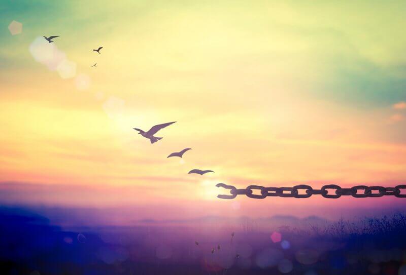 自由権とは?3つの自由や判例を簡単解説|政治ドットコム